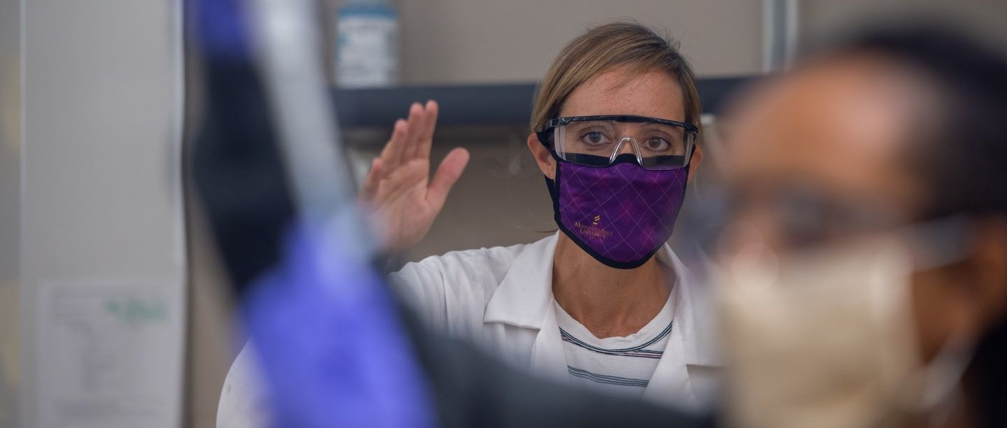 Working in lab with masks